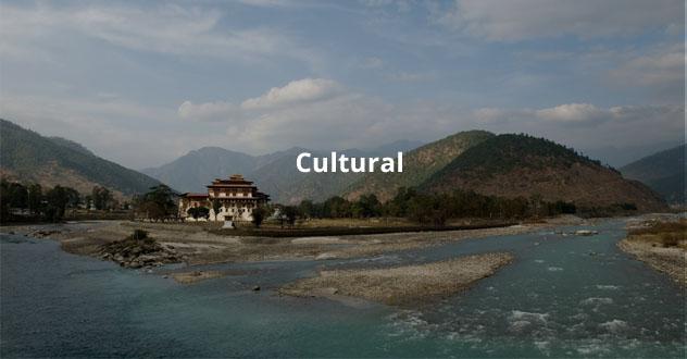 Cultural Plan