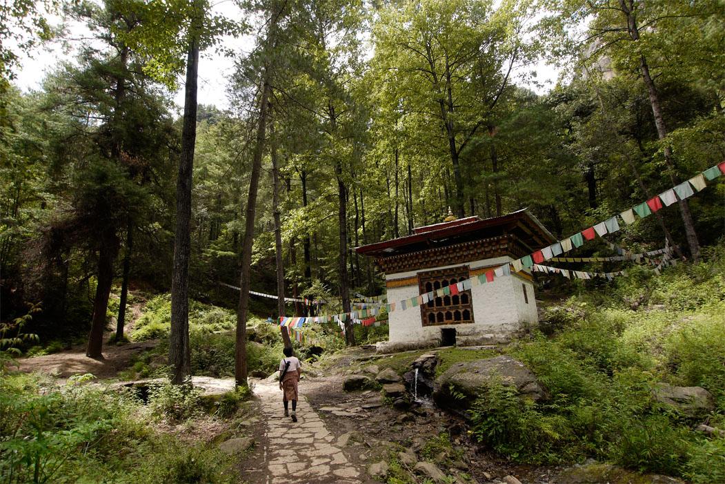 About Bhutan Druk Asia Drukair Rep
